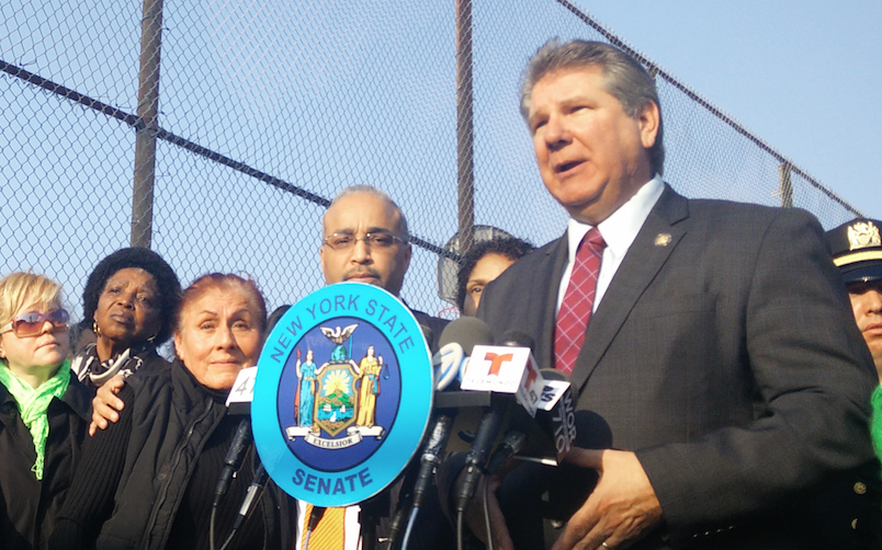 Assemblyman Michael DenDekker thinks pedestrians are to blame for the city's hit-and-run epidemic. Photo: David Meyer